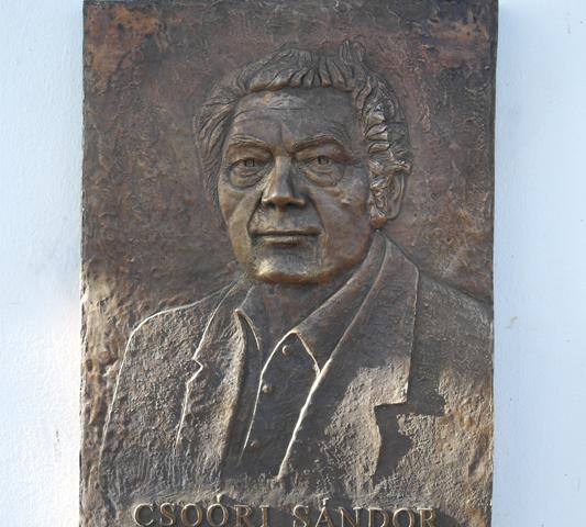 Csoóri Sándor dombormű, 2017,Gárdony Irodalmi emlékfal, életnagyság, ötött bronz 533x500